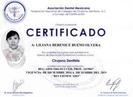 Doctora recertificada por la ADM (Asociación Dental Mexicana), la asociación más importante de México reconoce a Liliana Bueno por una capacitación constante y con un currículum que lo avala.